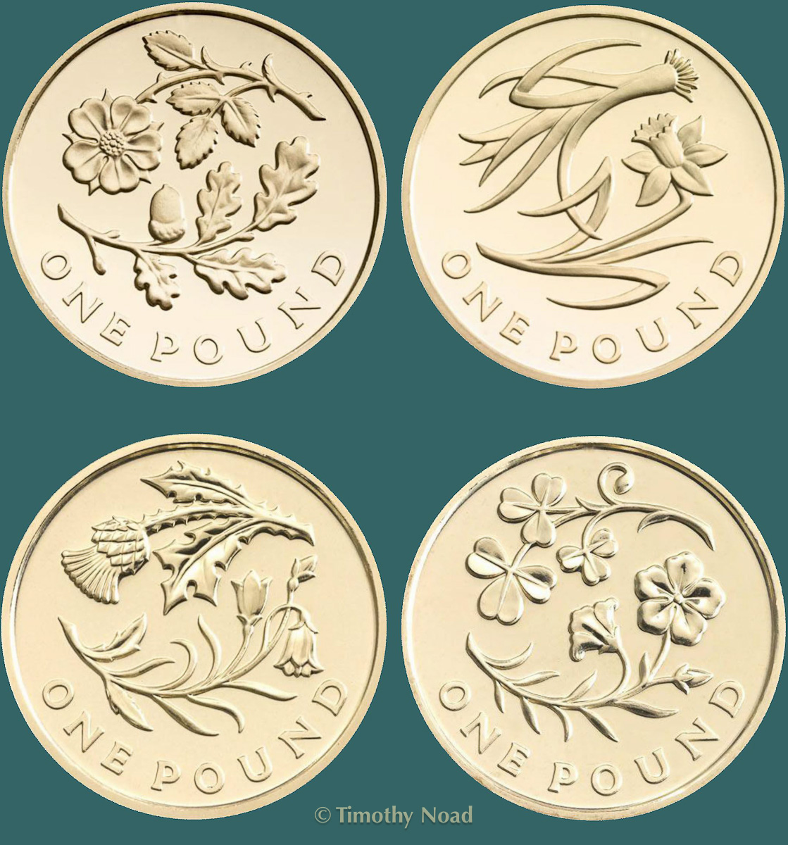 Floral Series of One Pound coins 2013-14 coins and medals