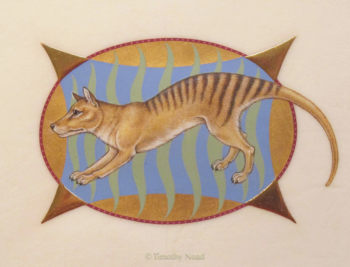 Thylacine miniatures